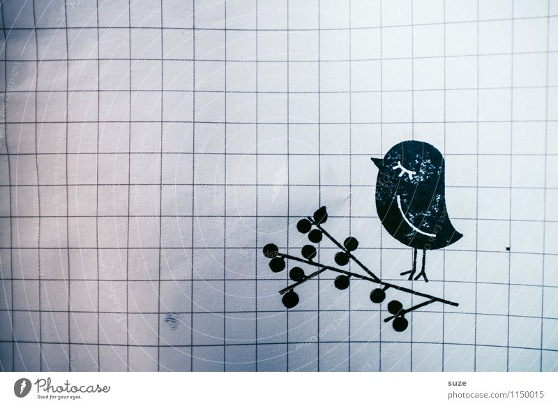 Animal Black Funny Style Happy Small Moody Lifestyle Bird Leisure and hobbies Design Dirty Beginning Creativity Simple Idea