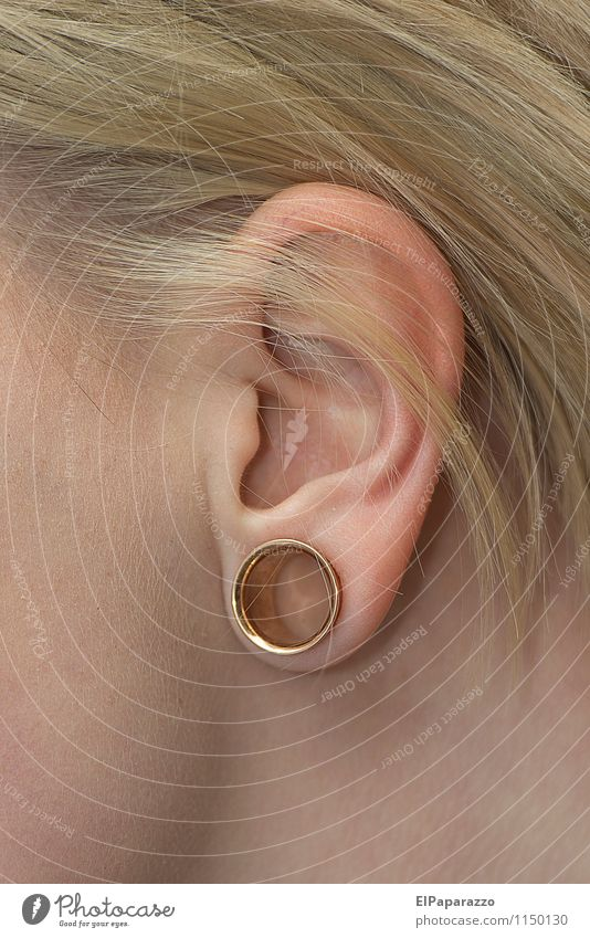 tunnel piercing Style Design Beautiful Face Woman Adults Man Ear Accessory Piercing Metal Gold Esthetic Authentic Eroticism Modern Round Identity Inspiration