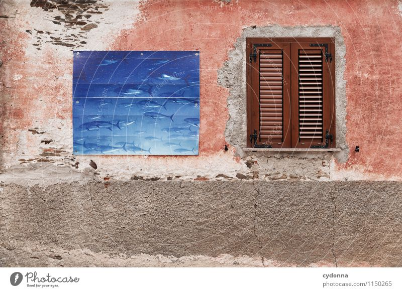 Vacation & Travel City Water Ocean House (Residential Structure) Window Life Wall (building) Eating Wall (barrier) Lifestyle To enjoy Italy Protection Curiosity