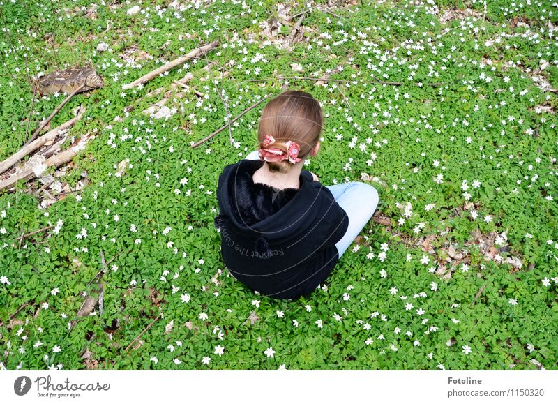 Human being Nature Youth (Young adults) Plant Beautiful Green White Young woman Flower Landscape Girl Forest Black Environment Blossom Spring
