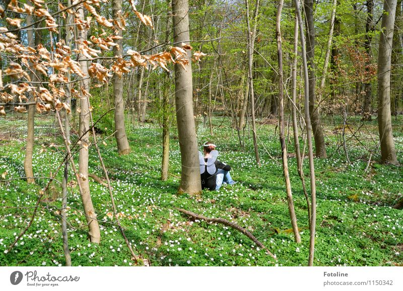 Human being Child Nature Youth (Young adults) Plant Green White Young woman Tree Flower Landscape Girl Forest Environment Spring Natural
