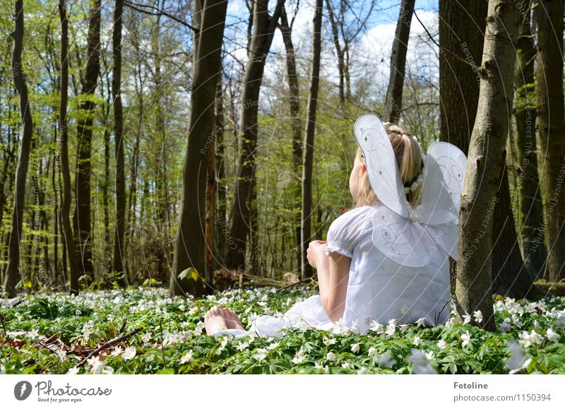 White-bellied Coquette Human being Feminine Child Girl Infancy Body Skin Head Hair and hairstyles Back Arm Feet 1 Environment Nature Landscape Plant Sky Clouds