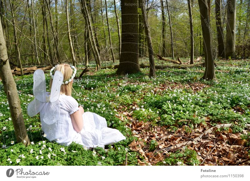 wood elf Human being Feminine Child Girl Infancy Body Head Hair and hairstyles 1 Environment Nature Plant Spring Beautiful weather Tree Flower Forest Blonde