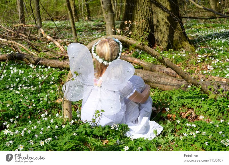 Human being Child Nature Plant Green White Tree Flower Landscape Girl Forest Environment Blossom Spring Natural Feminine