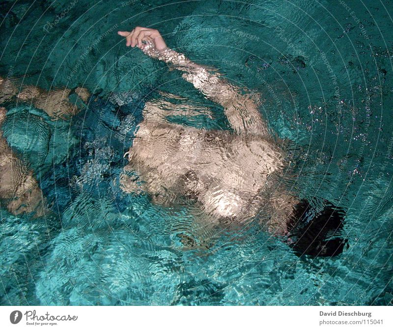 Youth (Young adults) Adults Swimming & Bathing Individual Swimming pool Dive Athletic Turquoise Surface of water Whirlpool 1 Person Mens back One young adult man Only one man