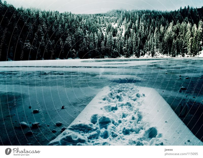 Sky Blue Vacation & Travel Winter Clouds Loneliness Calm Forest Relaxation Dark Cold Snow Lanes & trails Lake Ice Wind