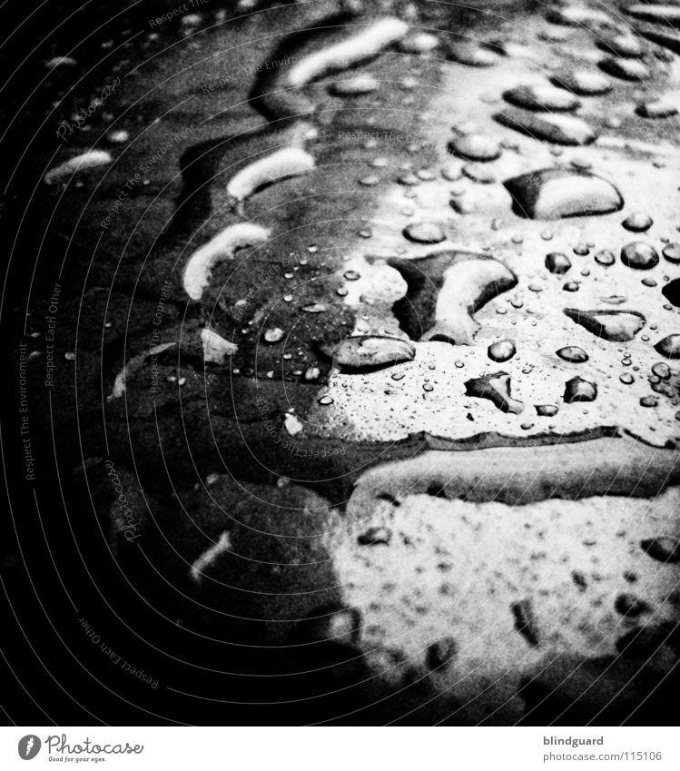 Water Black Lamp Dark Autumn Rain Glittering Pink Environment Drops of water Wet Climate Statue Plastic Thunder and lightning Damp