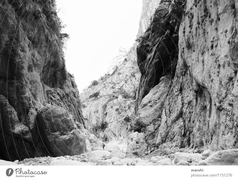 canyon gorroppu Nature Landscape Plant Sky Spring Summer Mountain Canyon Moody Hiking Stone Deep Height Sardinia Travel photography Black & white photo