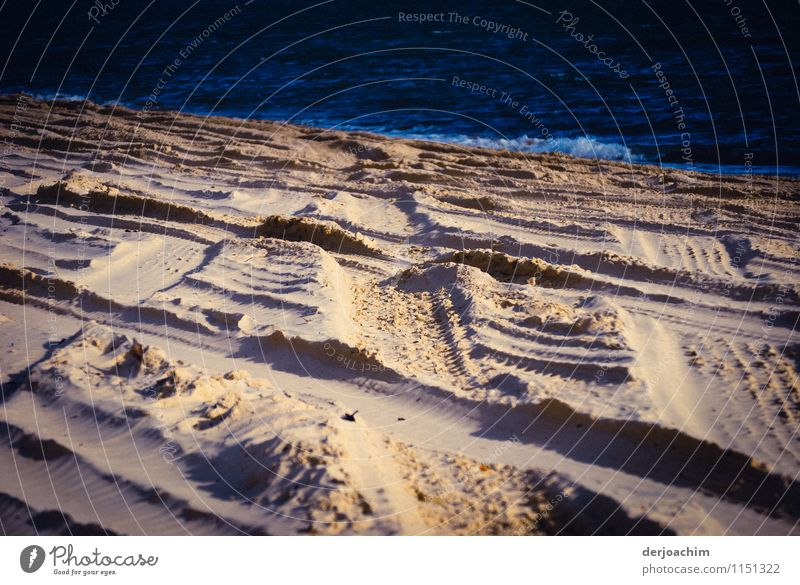 Car tracks in the sand of Fraser Island in sunlight. Above you can see the blue sea. Joy Life Trip Summer Waves Nature Sand Water Beautiful weather Ocean