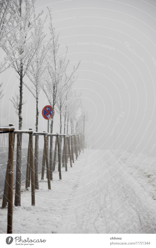 Winter cycle path Snow Ice Frost huts Fog chill Hoar frost Street street sign freezing cold Clearway Freeze Frozen Exterior shot Crystal structure Nature Tracks