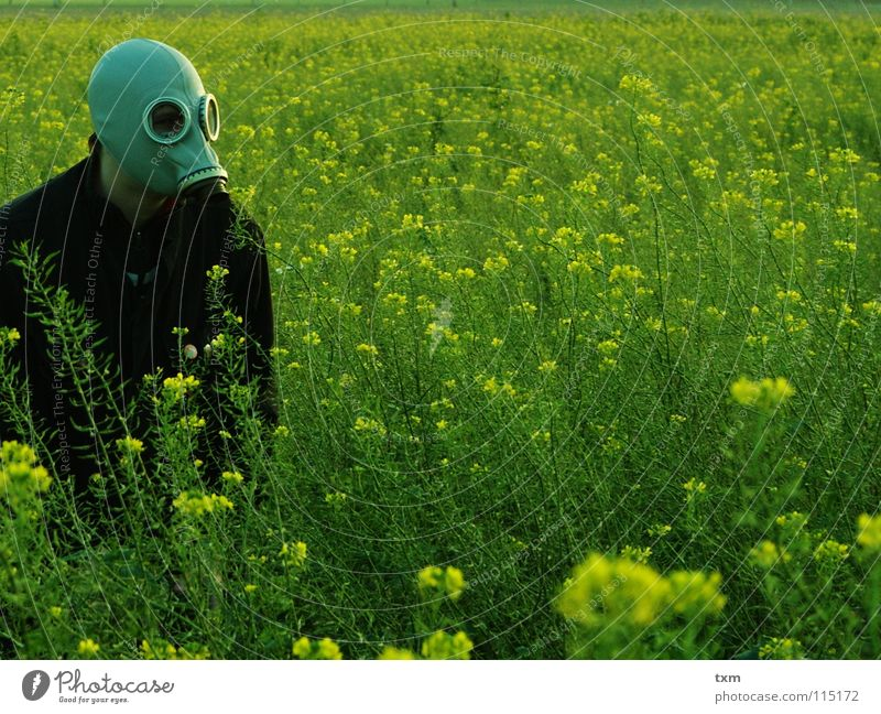 Hand Green Plant Flower Joy Black Yellow Landscape Gray Field Fear Arm Dangerous Planning Threat Mask
