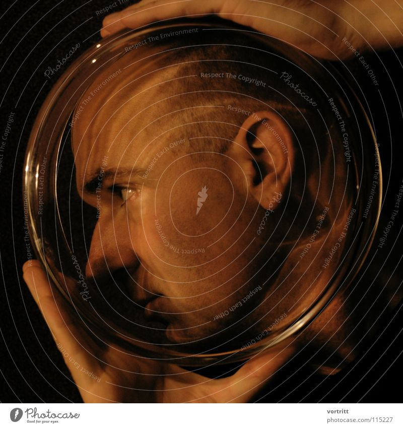 major tom Portrait photograph Close-up Hand Fingers Light Artificial light Captured Flower vase Visual spectacle Style Arts and crafts  me Glass Behind Ear Eyes