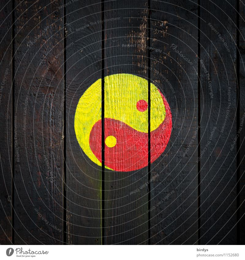 Yin + Yang Wall (barrier) Wall (building) Sign Yin and Yang Esthetic Authentic Simple Positive Round Yellow Red Black Truth Design Religion and faith Attachment