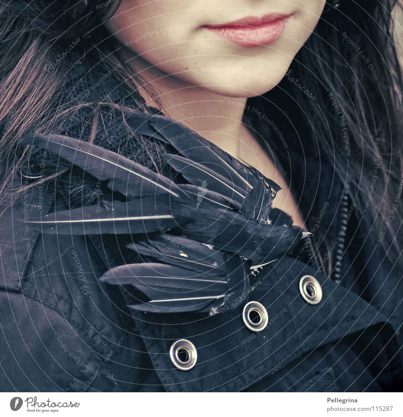 Woman Winter Calm Black Dark Cold Mouth Bird Pink Flying Smooth South Chin Swallow Migratory bird