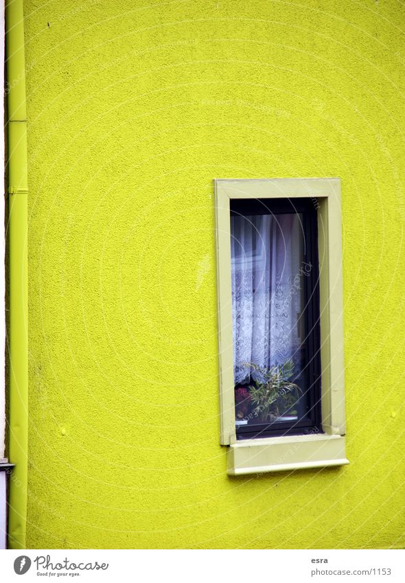 House (Residential Structure) Yellow Wall (building) Window Wall (barrier) Building Architecture Curtain Window board Housefront