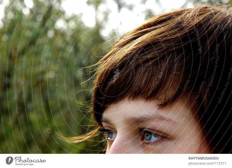 Blue eyes Brunette Curl Green Tree Bushes Woman Looking blue eyes Bangs
