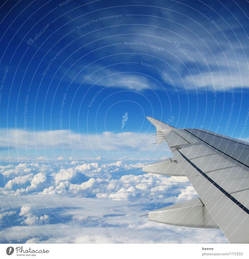 Sky White Blue Vacation & Travel Clouds Far-off places Above Freedom Air Airplane Tall Aviation Level Wing Portugal
