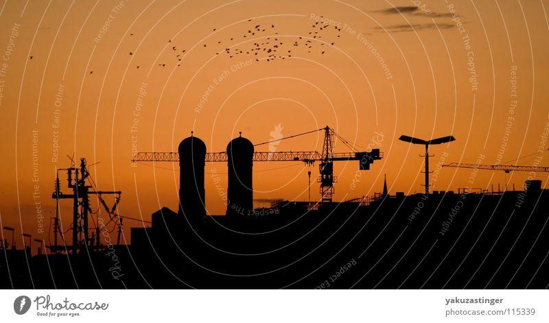 Red Clouds Orange Bridge Construction site Munich Lantern Crane Overhead line Migratory bird