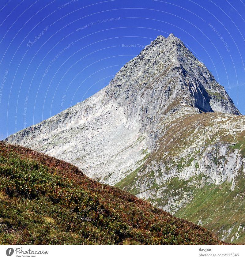 Swiss mountain peak Summer Massive Calm Might Gray Peak Switzerland Gravel Flower Mountain Mountain ridge Point Rock timber line Blue Sky