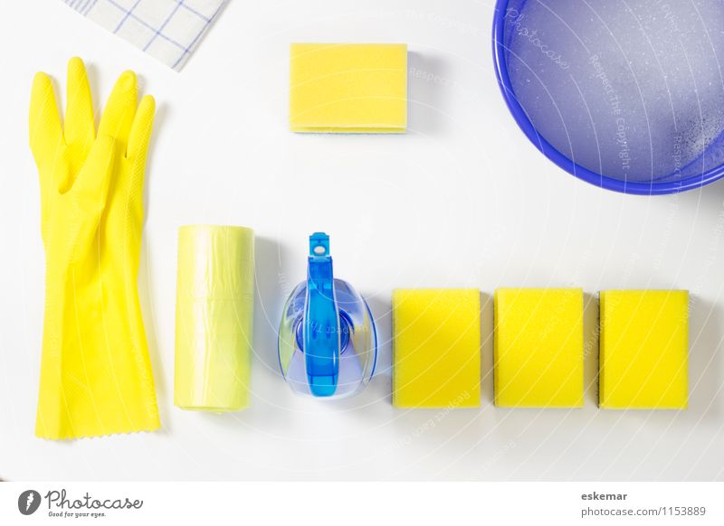 Blue White Yellow Flat (apartment) Living or residing Copy Space Clean Cleaning Household Gloves Towel Housekeeping Bucket Cleaner Cleaning agent Household item