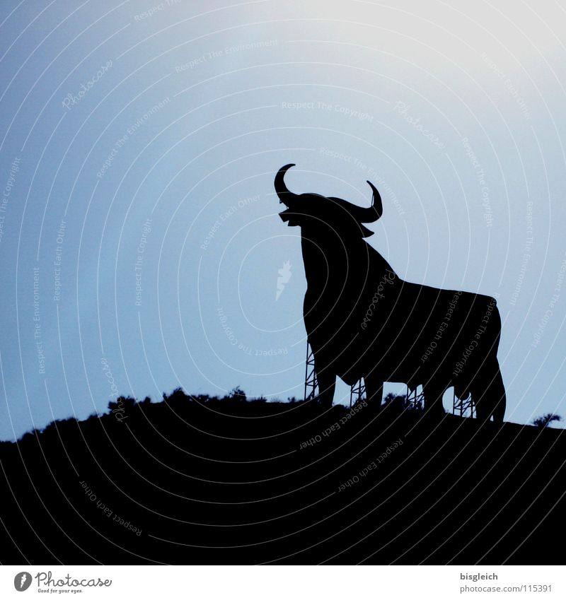 El Toro (Spain) Animal Sky Farm animal 1 Signs and labeling Strong Blue Power Advertising Andalucia Bull Bullfight Sherry Force brandy silouette Colour photo