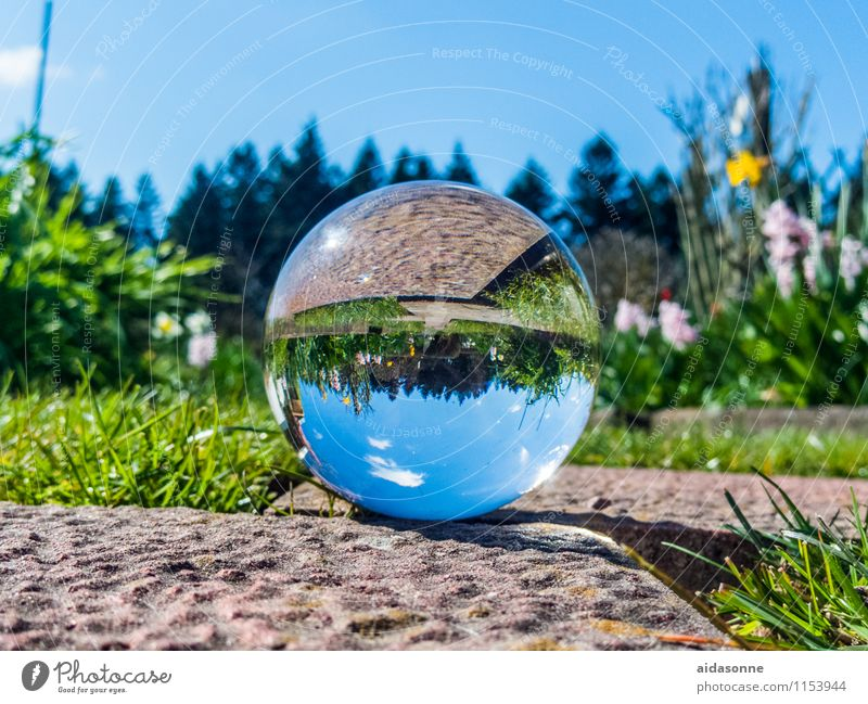 "Glass ball in spring Art Work of art Sculpture Attentive Calm ""Glass glass ball"" Crystal Sphere Garden Park Spring Colour photo Multicoloured Exterior shot"