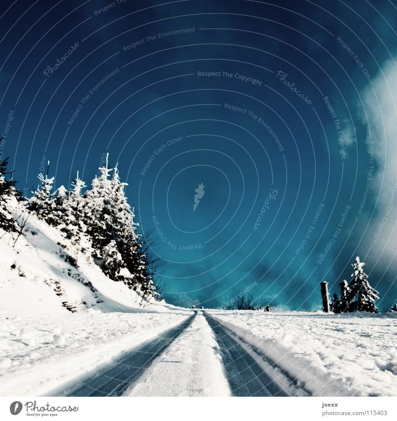 Sky Blue White Winter Clouds Forest Landscape Street Cold Snow Lanes & trails Ice Tracks Railroad tracks Fir tree Traffic infrastructure