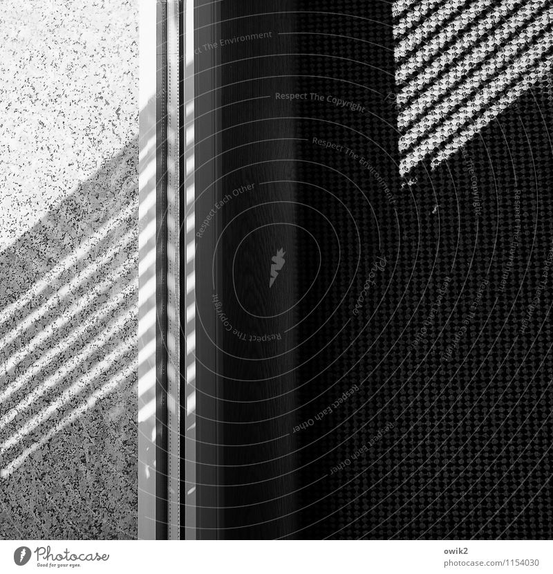 vicino Shadow Shadow play Carpet Pane Window board Line Diagonal Stone Under Emotions Black & white photo Interior shot Close-up Detail Abstract Pattern