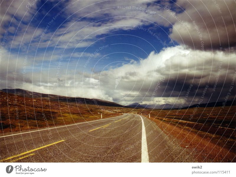 Sky Nature Vacation & Travel Plant Summer Landscape Clouds Far-off places Street Above Horizon Speed Climate Beautiful weather Logistics Driving