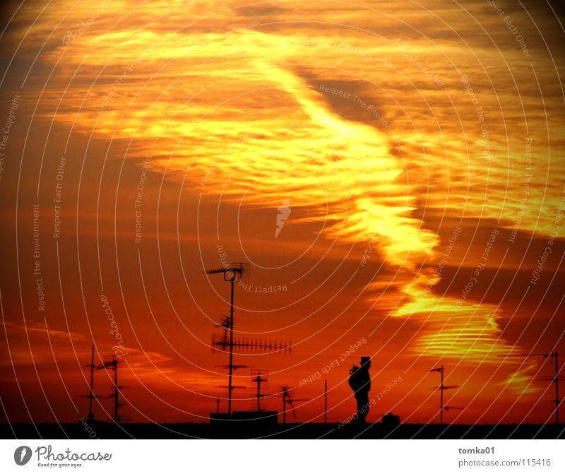 ON THE AIR. Red Yellow Clouds Sunset Light Evening Roof Antenna Chimney sweep Man Moonstruck Exterior shot Sky Structures and shapes Dusk Above Red sky