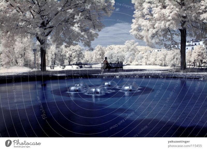 Feel Flows Infrared Infrared color White Well Tree Horizon Leaf Meadow Grass Bushes Long exposure Blue Water Sky channel shifting
