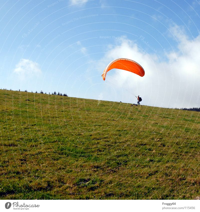 Tree Green Joy Clouds Colour Meadow Grass Orange Horizon Beginning Romance Concentrate Paragliding Sky blue Cumulus Funsport
