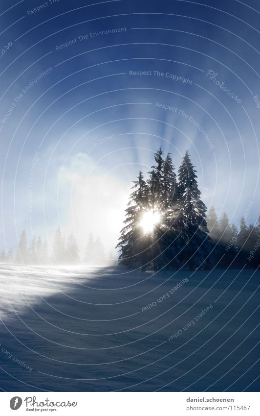 Sky Nature Vacation & Travel Blue White Sun Tree Loneliness Winter Cold Mountain Snow Background picture Germany Horizon Weather