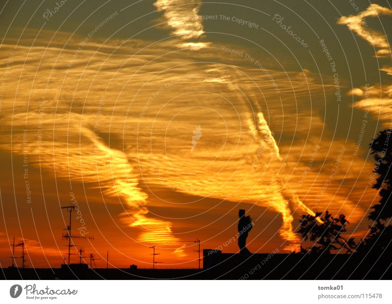 Sky Man Red Clouds Yellow Above Roof Bizarre Dusk Antenna Sunset Chimney sweep Clouds in the sky Picturesque Moonstruck Cloud formation