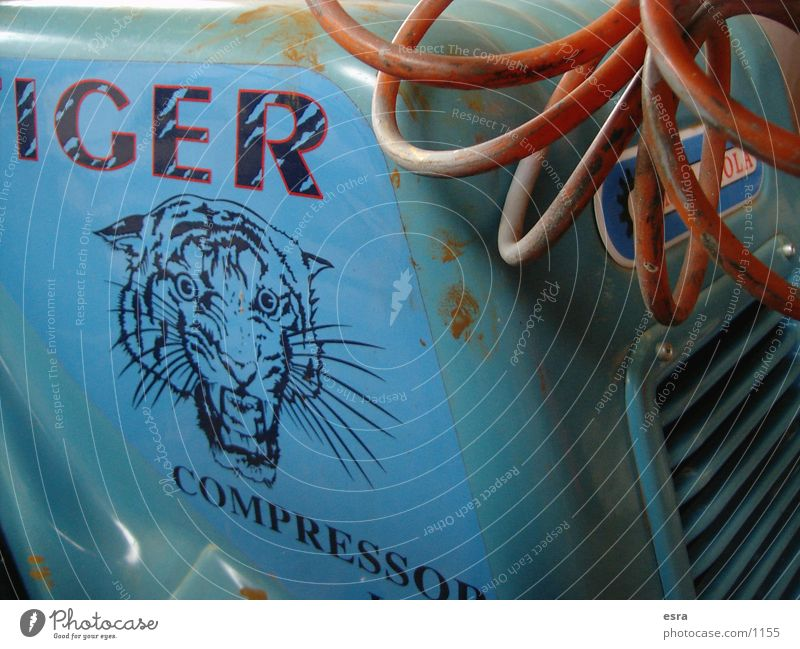 tiger Tractor Tiger Engines Compressor Obscure Cable Old Close-up Blue