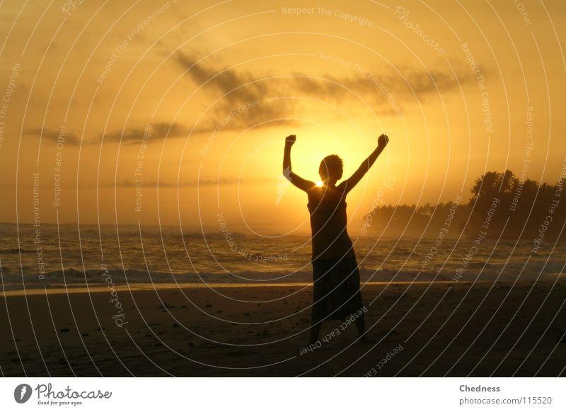 Sky Water Sun Vacation & Travel Ocean Joy Beach Clouds Freedom Sand Coast Bright Waves Dance Arm Palm tree