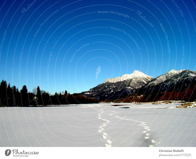 winter Tracks Snow track To go for a walk Snowscape Deep snow Powder snow Winter sports White Mountain Landscape River Sky Blue