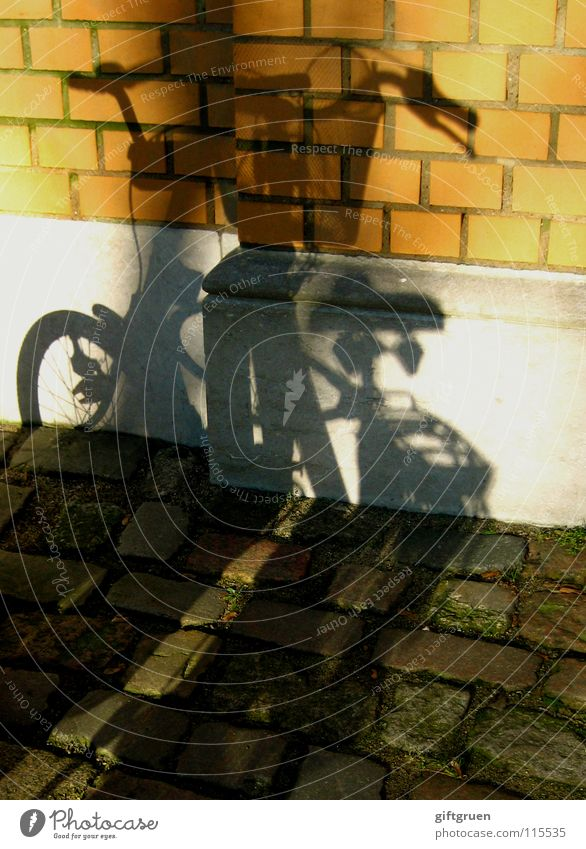 shadowy existence of a wire Bicycle Shadow Light Wall (barrier) Brick Driving Shadowy existence Sunbathing Playing Leisure and hobbies Transport Throw Stone