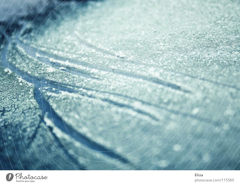 predetermined breaking points Scratch mark Ice-skating Frozen Lake Cold Ice crystal Winter sports Frozen surface Tracks Snow skate Blue Glittering Bluish