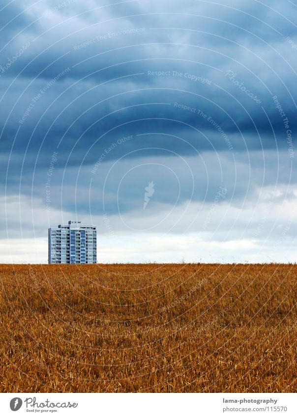 Sky Nature Blue Clouds Loneliness House (Residential Structure) Far-off places Autumn Meadow Cold Lanes & trails Building Rain Field Wind Gold