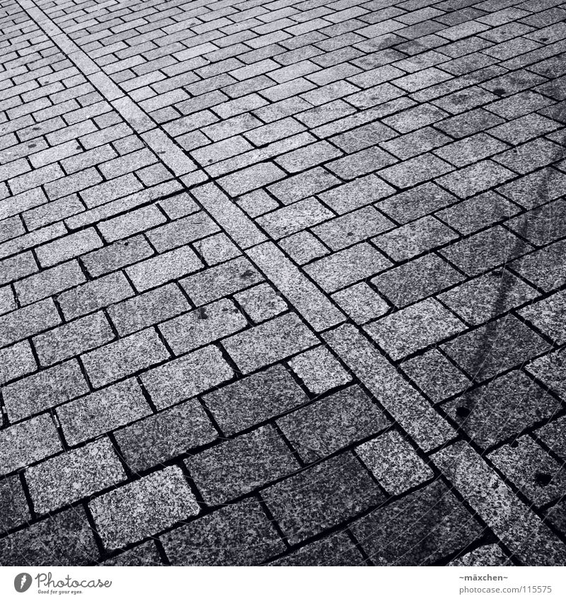 paving stone Black White Diagonal Square Rectangle Progress Two-piece Driving Going Black & white photo Transport Traffic infrastructure Cobblestones Stone B/W