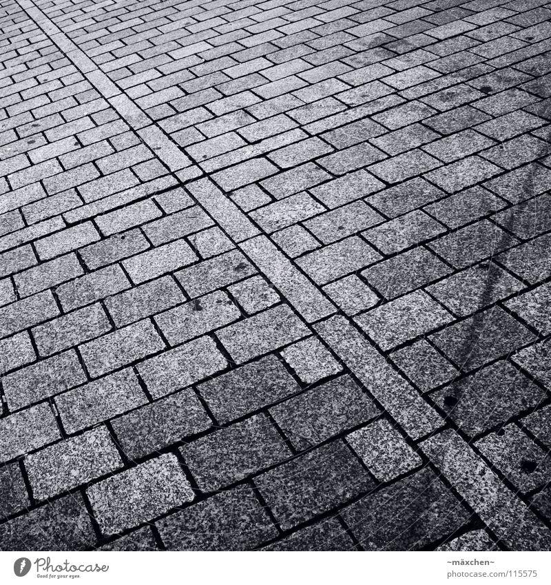 White Black Street Stone Lanes & trails Going Walking Transport Driving Square Traffic infrastructure Cobblestones Diagonal Classification Divide Progress