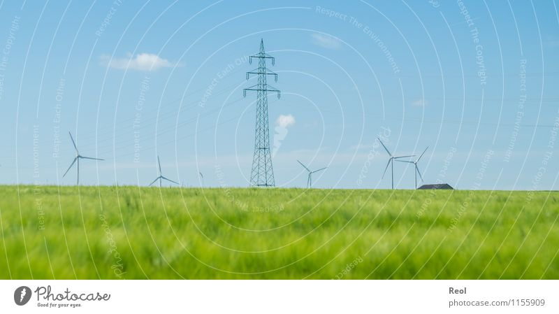 Sky Nature Blue Green Landscape Environment Spring Energy industry Field Technology Electricity Change Wind energy plant Rotate Electricity pylon