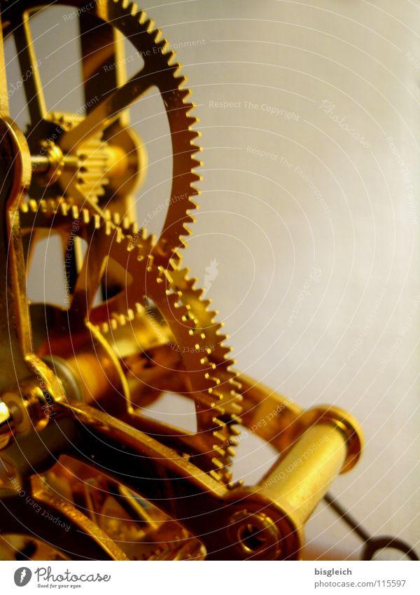 Beautiful Gold Gold Time Technology Clock Transience Gearwheel Mechanics Watch mechanism Electrical equipment Collector's item