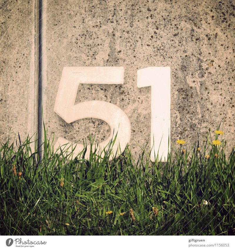 antimony Sign Characters Digits and numbers Signage Warning sign Blossoming Write 51 fifty-one Concrete Concrete wall Wall (building) Wall (barrier) Furrow
