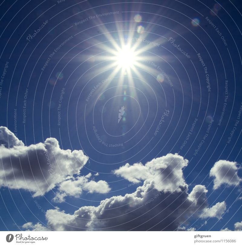 Sky Nature Blue Sun Clouds Freedom Exceptional Bright Weather Star (Symbol) Beautiful weather Elements Illuminate Awareness Celestial bodies and the universe Clouds in the sky