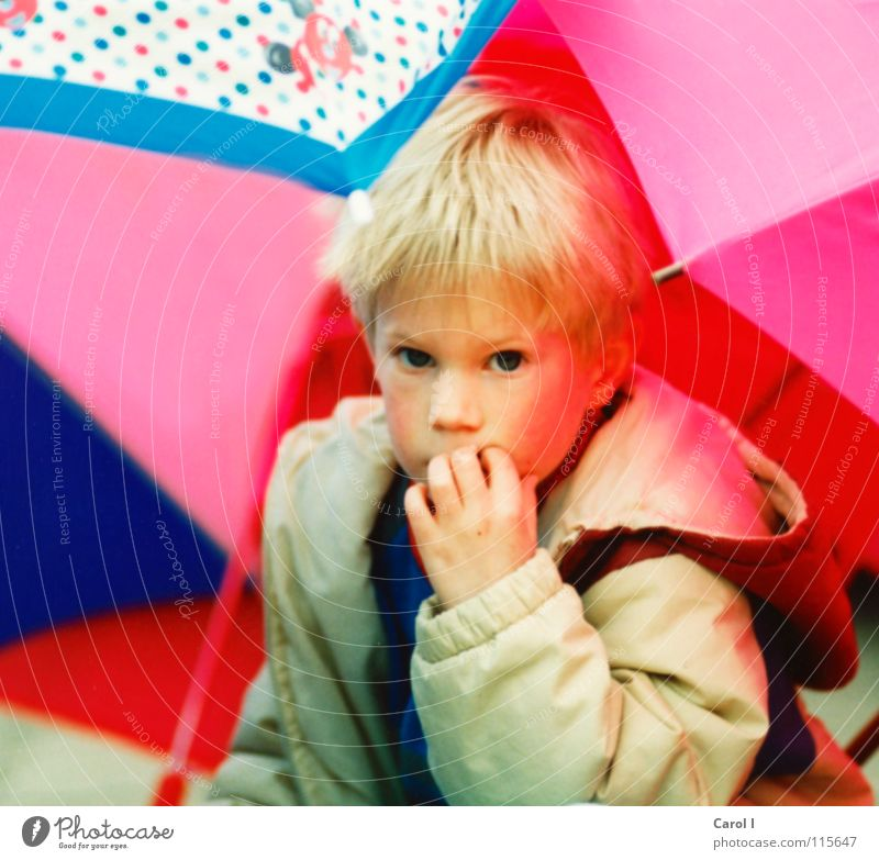 Child Girl White Blue Joy Face Eyes Yellow Playing Think Mouth Blonde Small Pink Nose Fingers
