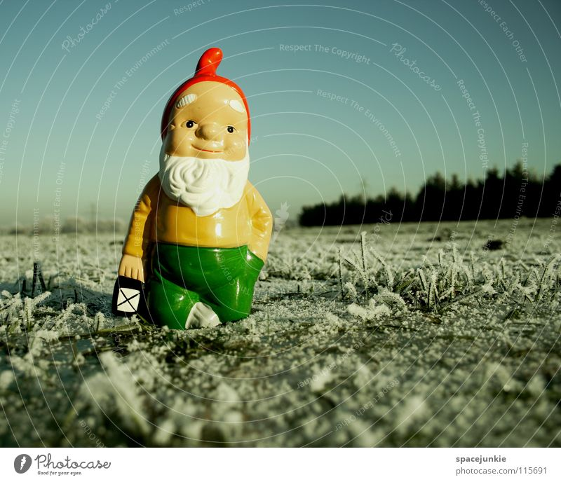 Looking for christmas (2) Meadow Grass Frozen Freeze White Hoar frost Exterior shot Winter December Cold Christmas & Advent Dwarf Garden gnome Whimsical