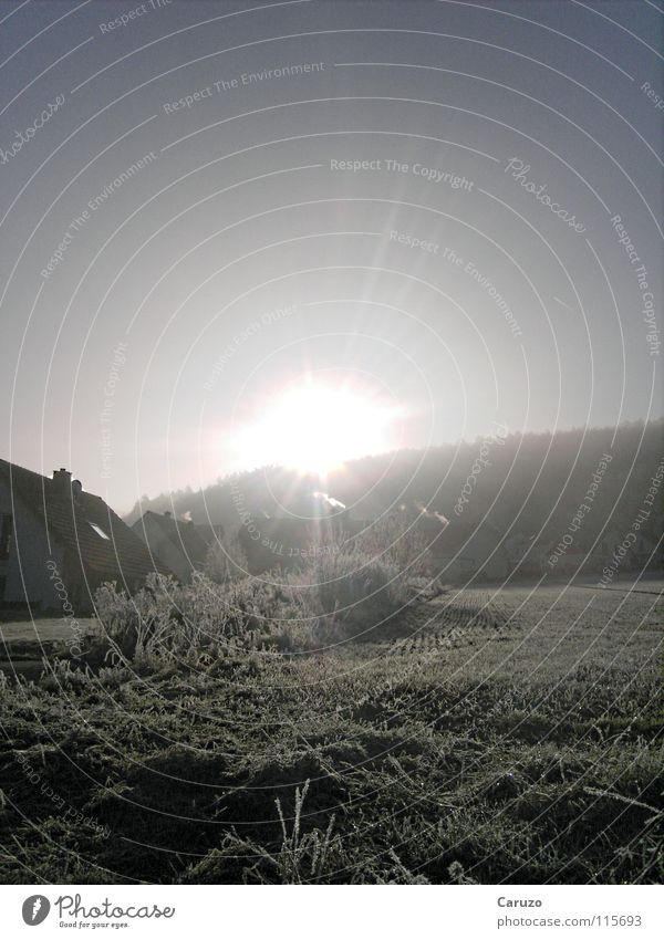 Morning sun5 Sunrise Cold Sunbeam Light Dazzle Incline Bright House (Residential Structure) Celestial bodies and the universe Winter Street Frost Clarity