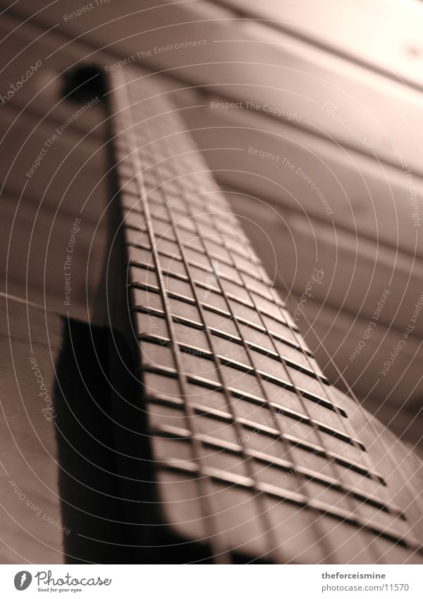 Things Guitar Musical instrument Musical instrument string Sepia
